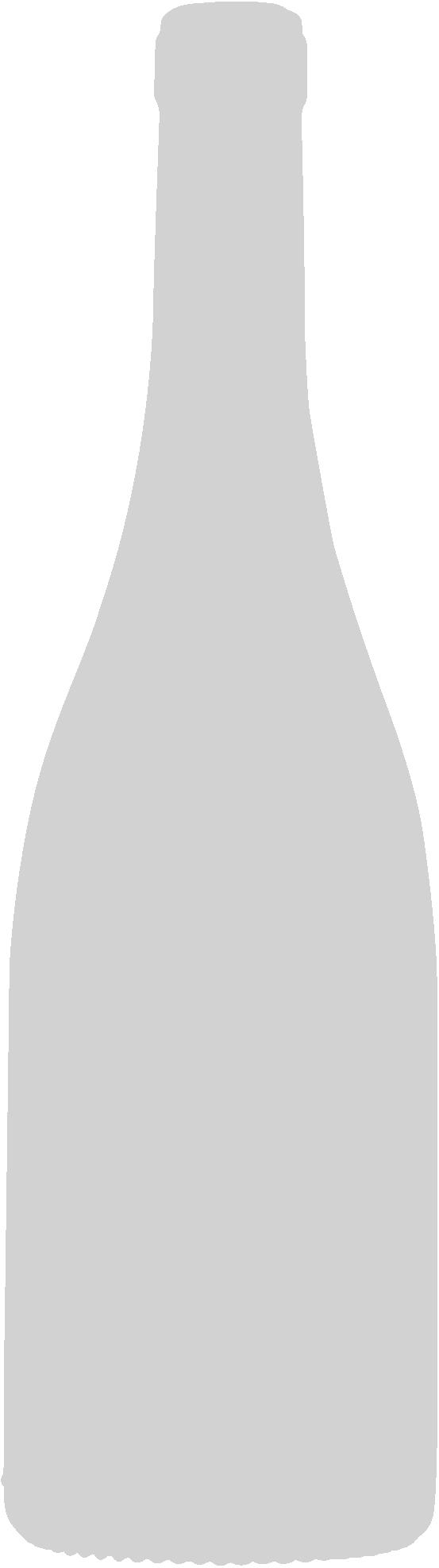 botella-avvenire